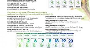"""GAMA """"POLYGEMMA RESPIRATOR"""" – complexe gemoterapice și fito-gemoterapice cu acțiune la nivel respirator și pentru creşterea rezistenţei organismului"""