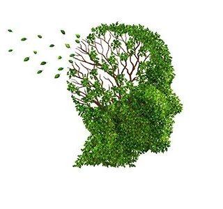 La nivel mondial, dementa afecteaza 50 de milioanede persoane