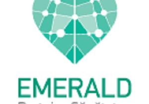CENTRUL MEDICAL EMERALD – primul si singurul laborator de rezonanta magnetica cardiovasculara din Sud-Estul Europei, acreditat de Societatea Europeana de Cardiologie