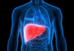 Atenție la… excesele alimentare și bolile ficatului!