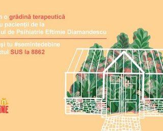 Peste 200 de pacienți internați la Spitalul de Psihiatrie Eftimie Diamandescu, își vor petrece vara într-o Grădină Terapeutică